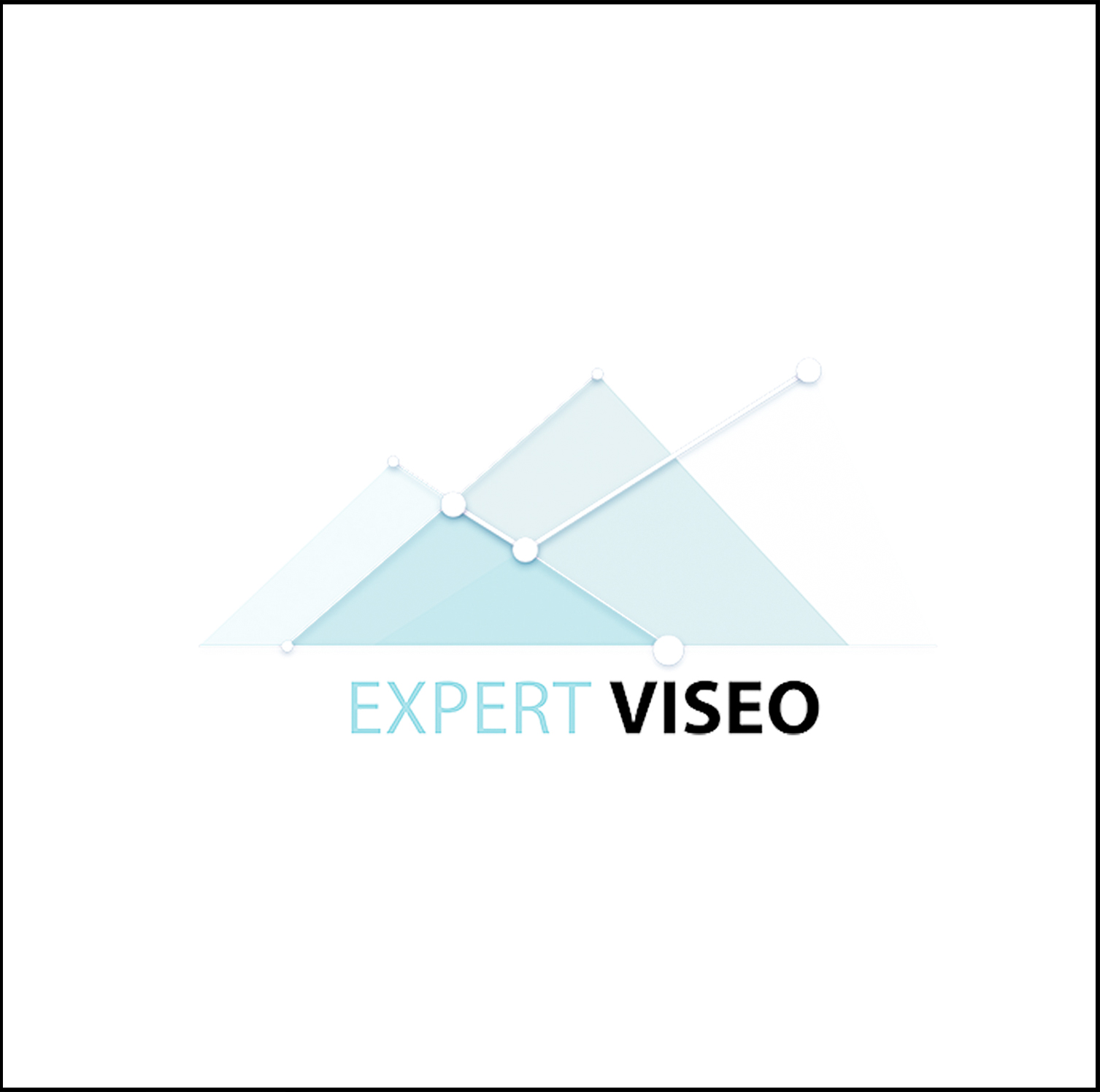 Expert Viseo, Webmarketing à Angers